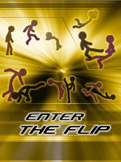 Вход в Флип java-игра